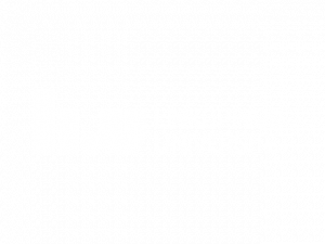 LIN_UNI_2